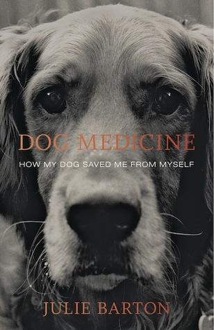 Dog Medicine book cover